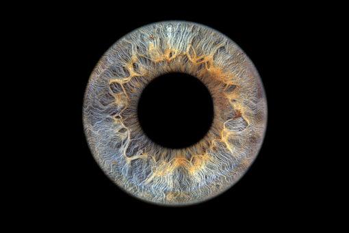 Irisfoto / Irisfotografie