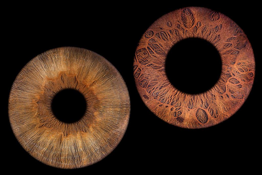Schönes, braunes Augenpaar